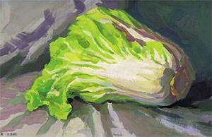 色彩白菜的表现技法解析