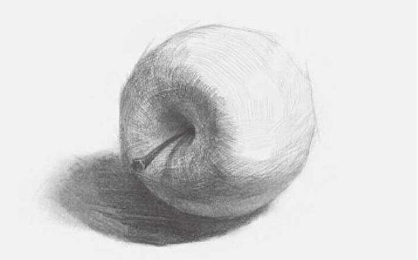 侧放素描苹果图片步骤三