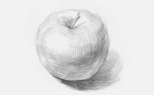 正放素描苹果图片步骤三