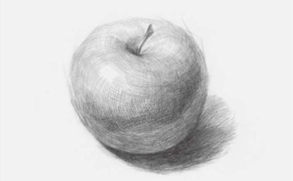 正放素描苹果图片步骤四