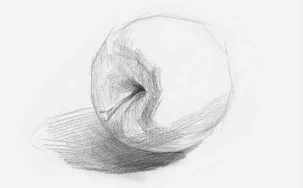 侧放素描苹果图片步骤二
