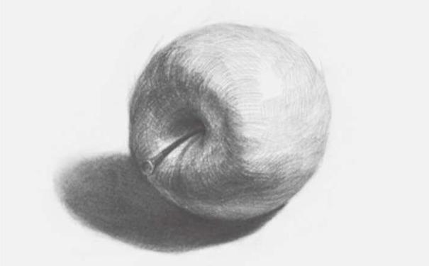 侧放素描苹果图片步骤四