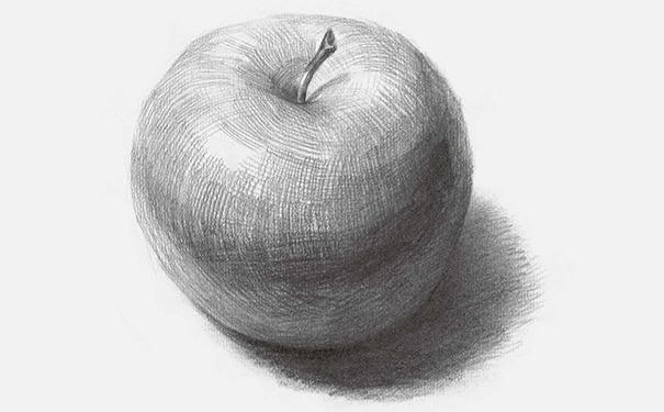正放素描苹果图片