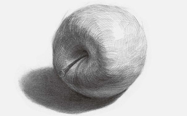 侧放素描苹果图片