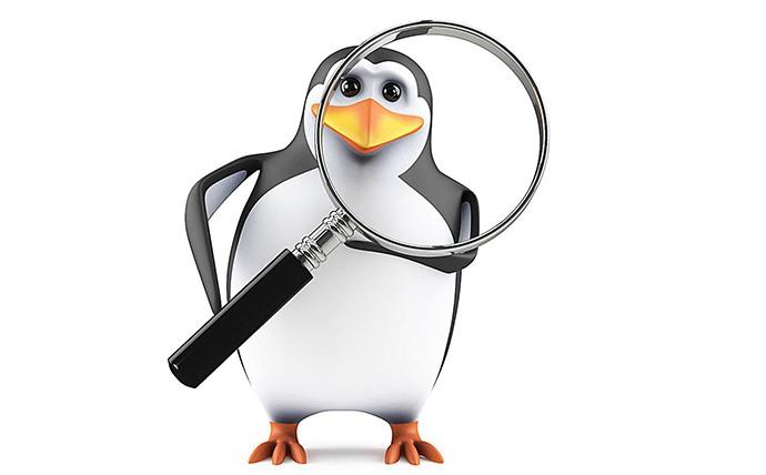 企鹅拿着放大镜图