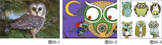 猫头鹰绘画步骤
