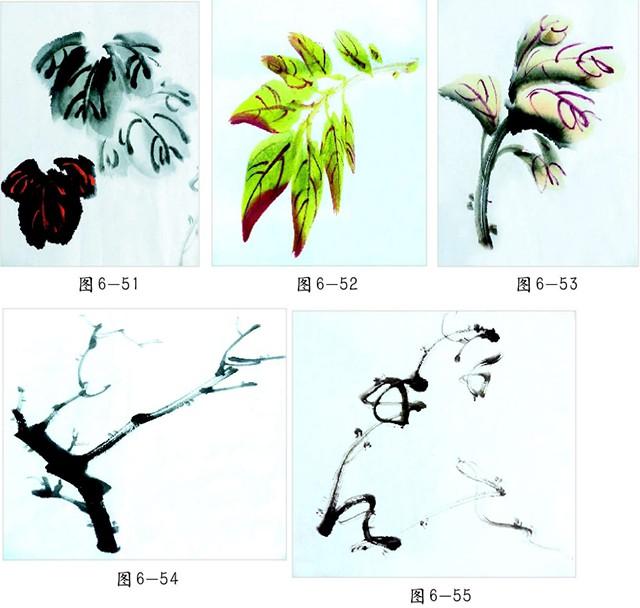 叶子、枝干、藤蔓的画法