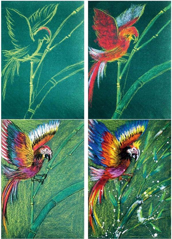 小鸟绘画步骤图