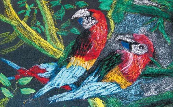 暑期少儿美术课程教案「爱美的鸟儿」