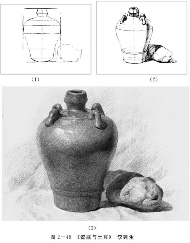 瓷瓶与土豆的画法步骤