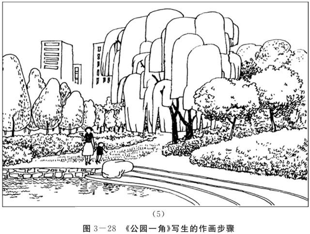 《公园一角》写生的作画步骤