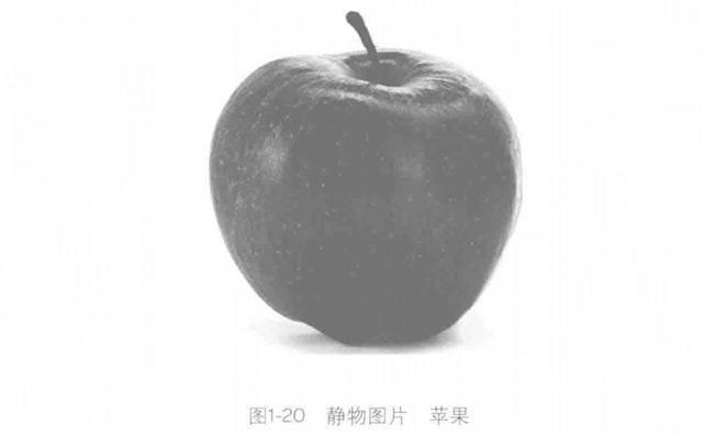静物苹果图片