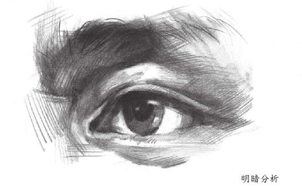 眼睛明暗分析