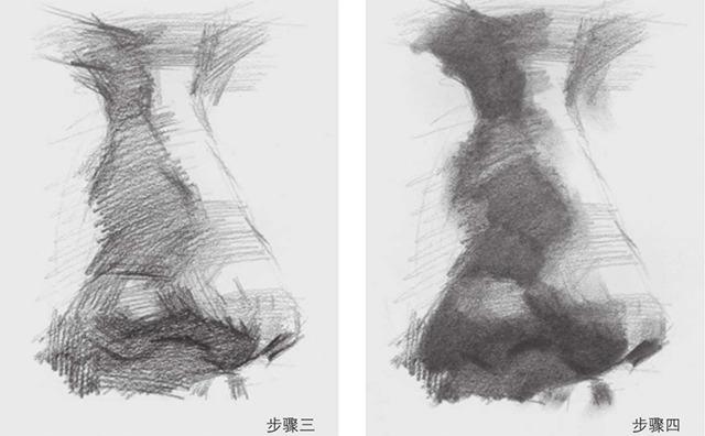 素描鼻子的画法图解三和四