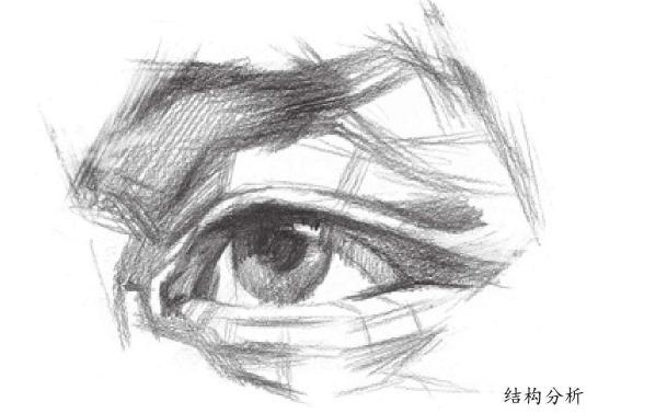 眼睛结构分析