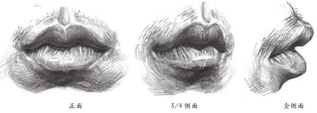 正面3/4侧面和全侧面嘴巴