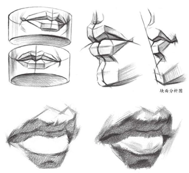 嘴巴块面分析