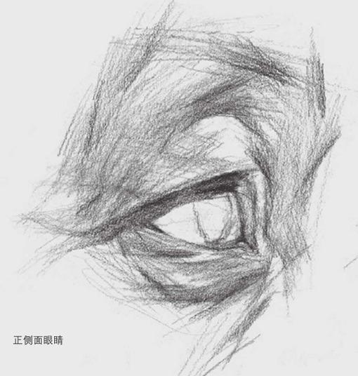 正侧面素描眼睛的详细画法