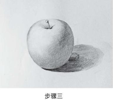 素描苹果怎么画步骤三