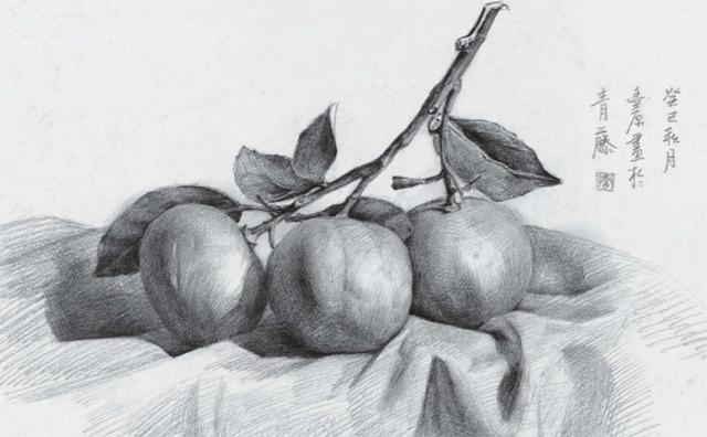 素描橘子的画法
