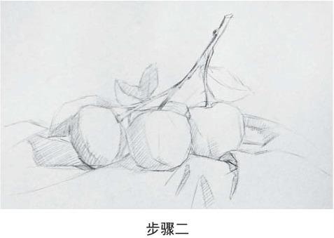 素描橘子的画法步骤二