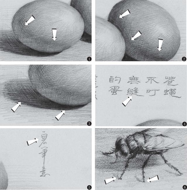 素描鸡蛋细节的画法