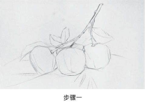 素描橘子的画法步骤一