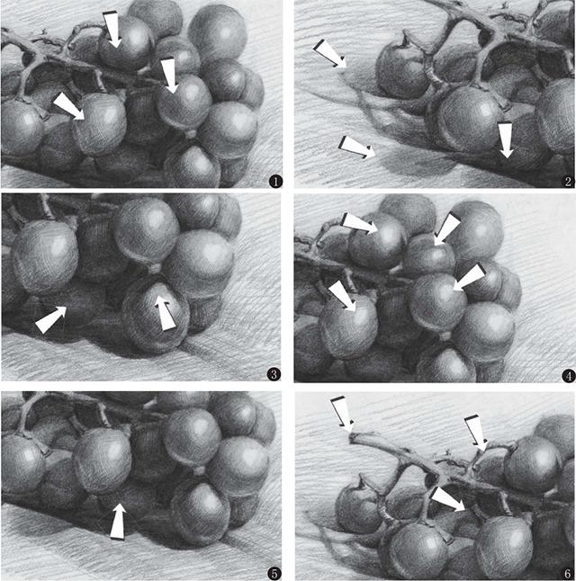 素描葡萄细节画法