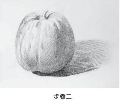 素描甜瓜怎么画步骤二