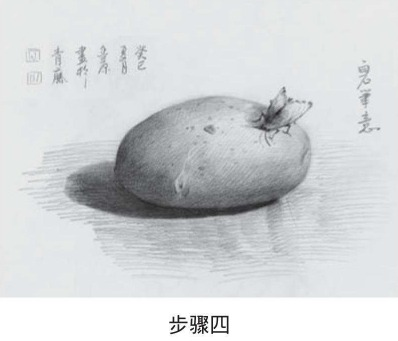 素描土豆的画法步骤四