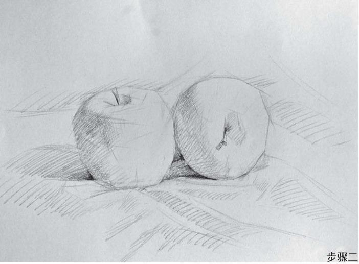 苹果组合素描步骤二