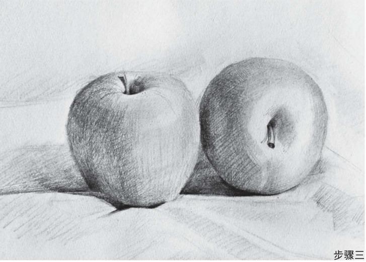 苹果组合素描步骤三