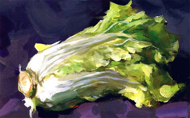 色彩白菜的画法