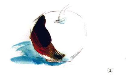 色彩苹果的画法步骤图(2)