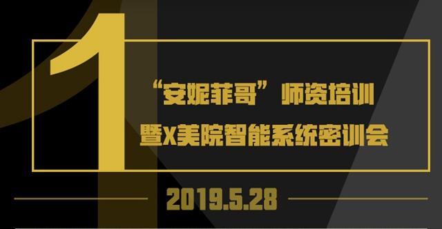 2019.5.28安妮菲哥师资培训暨X美院智能系统密训会