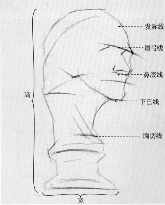 伏尔泰石膏像素描步骤二