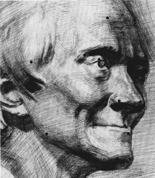 伏尔泰石膏像素描步骤十一