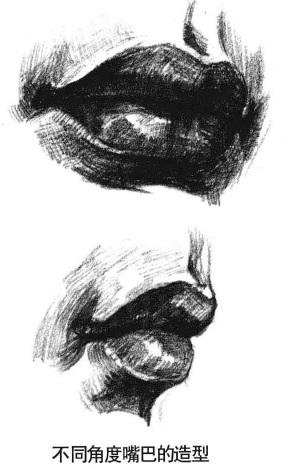 不同角度嘴巴的造型