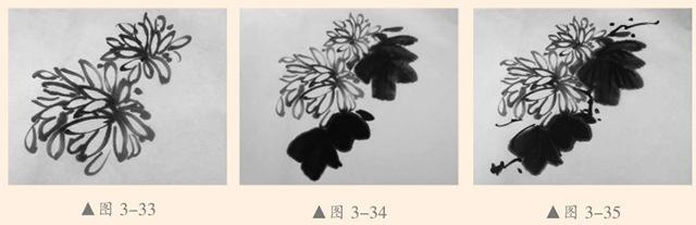 菊花的画法