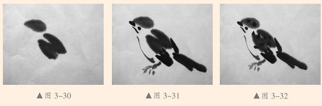 鸟的画法步骤
