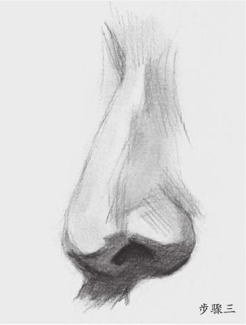 鼻子的画法(3)
