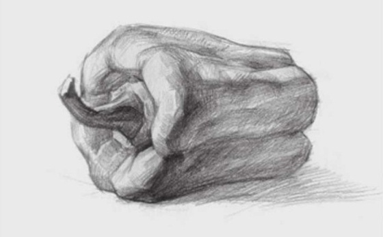 素描青椒的画法(3)