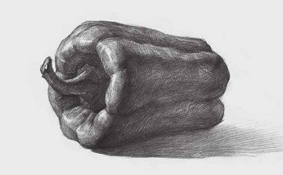 素描青椒的画法(4)