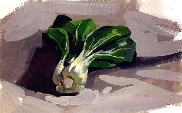 单体静物油菜水粉作画步骤(5)