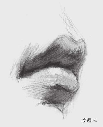 素描嘴巴怎么画(3)