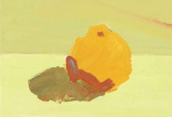 色彩橘子的画法(2)