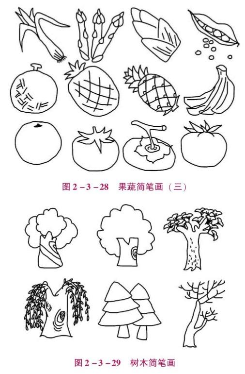 果蔬、树木的简笔画