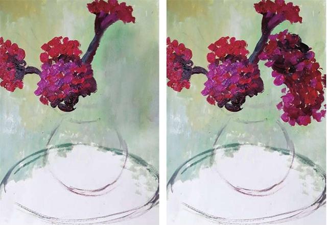 鸡冠花的画法(2)