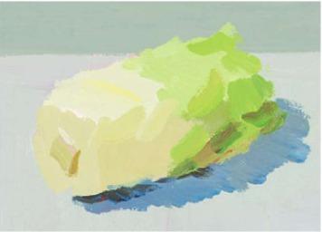色彩大白菜的画法(3)
