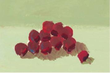 色彩葡萄的画法(2)